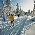 Postais de Ski