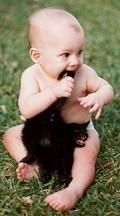 Postais de Puto com rabo no gato